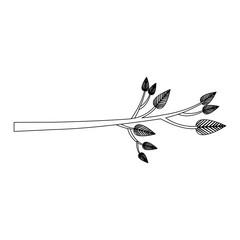 tree branch icon image vector illustration design