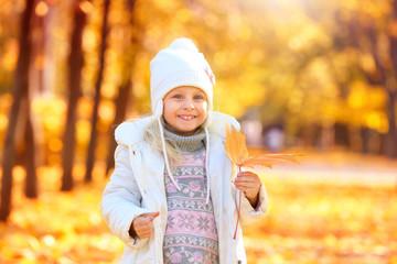 Cute little girl in autumn park on sunny day