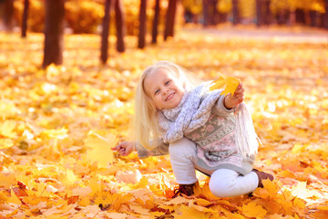Cute little girl playing with leaves in autumn park on sunny day