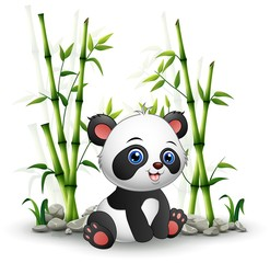 Baby panda sitting among bamboo stem
