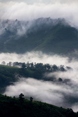 Tropical rain forest and mountain landscape
