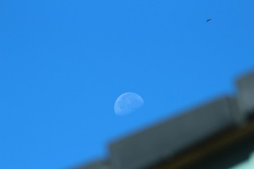 Moon above the roof/You can see moon above the roof.
