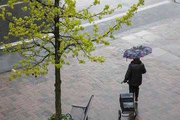 Regenschauer im Frühjahr