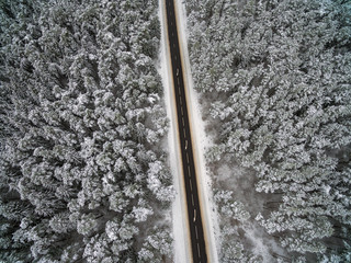 Empty snowy road in the forest