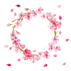 wreath of cherry flowers painted in watercolor