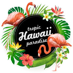 Hawaii tropic paradise. Vector illustration of tropical birds, flowers, leaves.