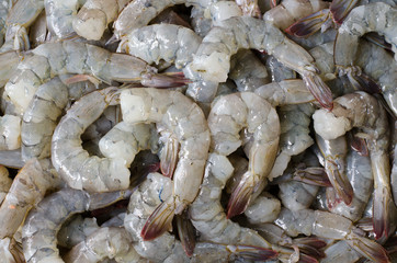 Raw Shrimp prepare for cooking