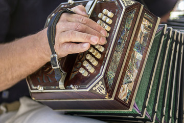 Man playing the bandoneon traditional tango instrument