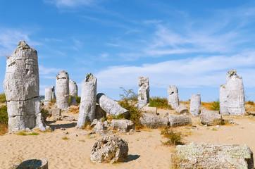 The Stone Desert