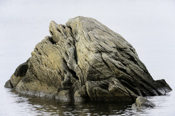 Big rock in water near shore