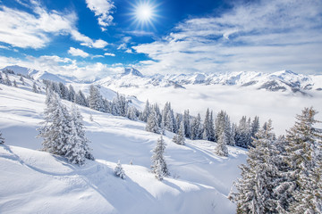 Trees and mountains covered by fresh snow in Kitzbühel ski resort, Tyrolian Alps, Austria Wall mural