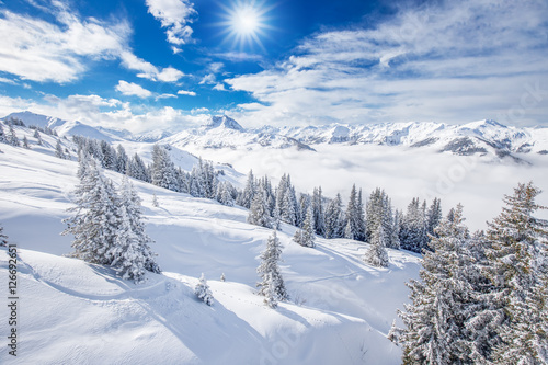 Fototapete Trees and mountains covered by fresh snow in Kitzbühel ski resort, Tyrolian Alps, Austria