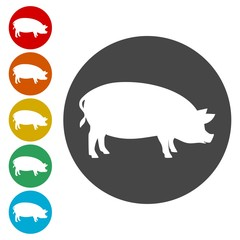 Silhouette of pig icons set