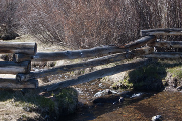 Aspen Fence Over Flowing Stream