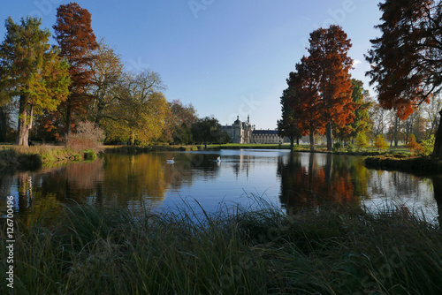 Le jardin anglais du parc de chantilly en automne france for Jardin anglais en france