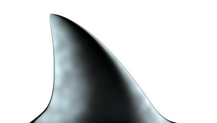 Shark Fin 3d Illustration