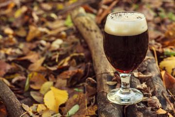 Dark beer in autumn forest