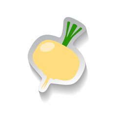 Turnips vector icon in flat style with shadow. Vegetable pictogram.