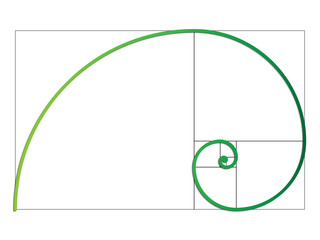 The Fibonacci spiral. Vector EPS 10