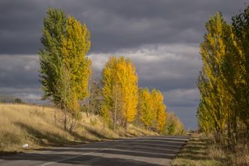 Autumn Ukrainian road