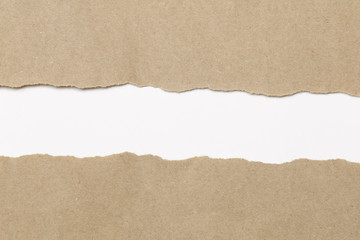 Torn paper with space for your message.