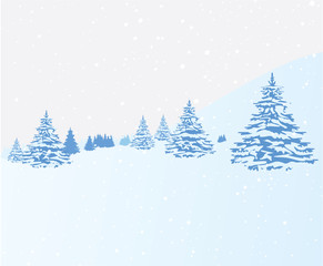 Forest with Fir and Deciduous Trees and Snow