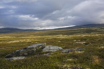 Photo sur Aluminium Pôle Tundra landscape on Rondane National park