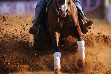 The front view of a rider in cowboy chaps and boots on a horseback running ahead and sliding the horse in the dirt
