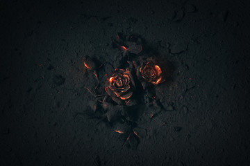 Rose buried in ashes Fototapete