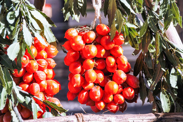 the typical neapolitan piennolo: bunch of  tomatoes hanging to dry