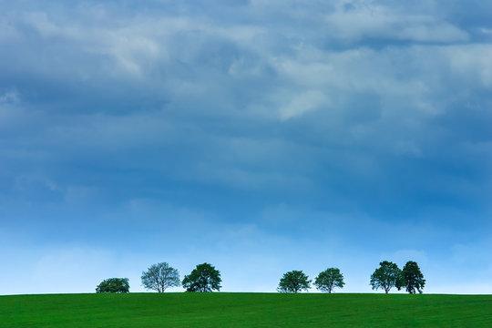 Bäume auf Wiese vor Gewitter-Himmel