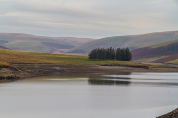 Trees reflected in the Craig Goch Reservoir, on edge of Mid-Wale