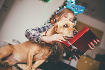 Girl sitting with her dog and opening christmas gift