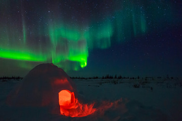Fototapete - Igloo and Aurora Borealis