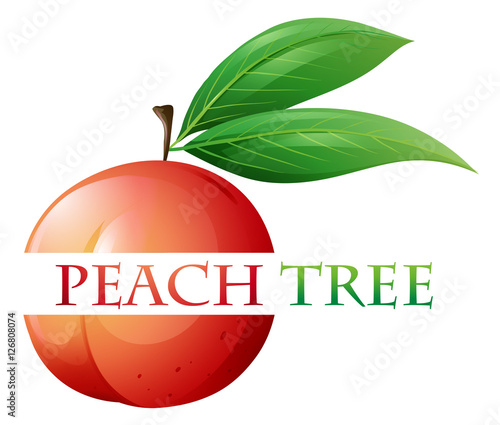 Font Design For Peach Tree Stock Image And Royalty Free