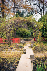 Ornamental garden with stone bridge in autumn