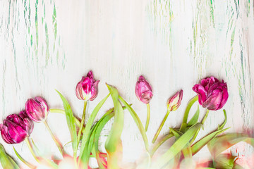Lovely  tulips with bokeh on shabby chic  background, top view, floral border