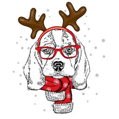 Funny dog wearing glasses and with horns. Puppy in a deer costume. Vector illustration for a card or poster, print on clothes. New Year's and Christmas.