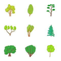 Varieties of trees icons set. Cartoon illustration of 9 varieties of trees vector icons for web