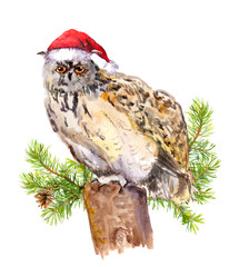 Owl in red santa's hat. Watercolor christmas animal
