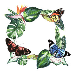Tropical Hawaii leaves palm tree and butterflies frame in a watercolor style isolated.