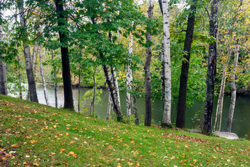 Forest  lake in the early autumn,  Monroe County, Wisconsin, USA