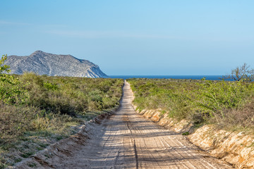 dirty road at Cabo Pulmo Baja California national park panorama