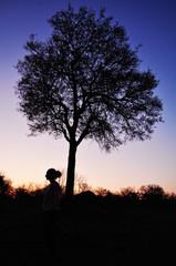 Sud Africa, 28/09/2009: profilo di donna con albero al tramonto nel Kruger National Park, la più grande riserva naturale del Sudafrica fondata nel 1898