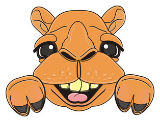 muzzle, face, happy, smiling, teeth, tongue, laugh, glasses, animal, cartoon, zoo, hump, dromedary, east, neck, toy, sweet, kind, cheerful, cute, happy, smiling, funny, camel