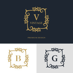 Monogram design elements, graceful template. Calligraphic elegant line art logo design. Letter emblem sign V, B, G for Royalty, business card, Boutique, Hotel, Heraldic, Jewelry. Vector illustration