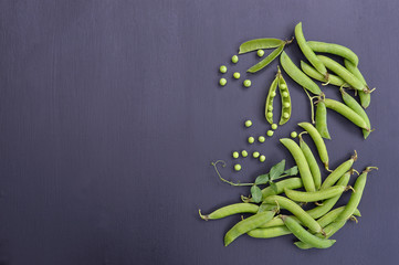 pods of green peas on a dark background. Agriculture.