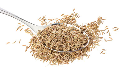Cumin seeds or caraway in spoon isolated on white background