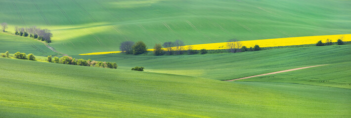 green and yellow field in panoramic landscape in Czech