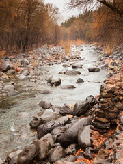 River Stream in the Fall 2